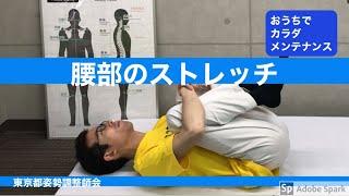 腰部のストレッチ~おうちでカラダメンテナンス・ストレッチ8