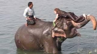 Ania i słoń