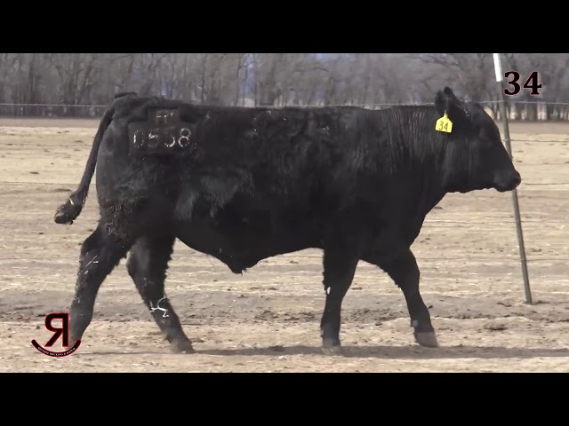 Reverse Rocking R Ranch Lot 34