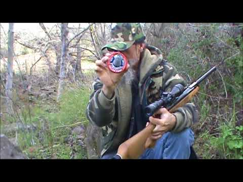 benjamin xl 1100 nitro piston 22 caliber pellet rifle demonstration and discussion