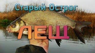 Русская Рыбалка 4 Острог ЛЕЩ ФАРМ!