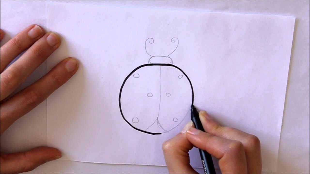 Cómo Dibujar Una Mariquita Fácil Dibuja Conmigo Dibujos De Animales