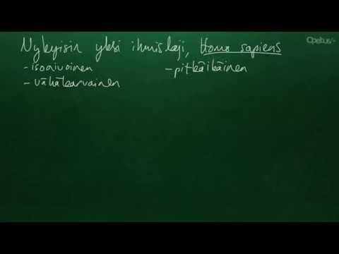 BI4 - Ihmisen biologia