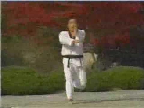 quyen 17 Taekwondo