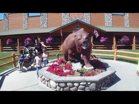 Bear World Yellowstone