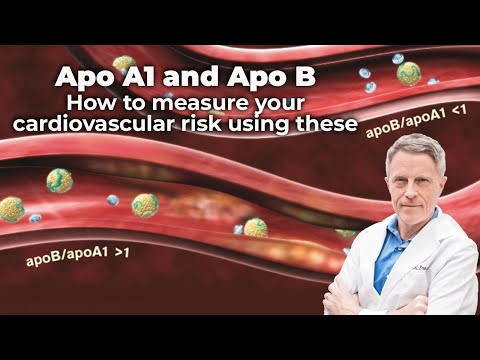 Apo A1 and Apo B: How to measure your cardiovascular risk using these