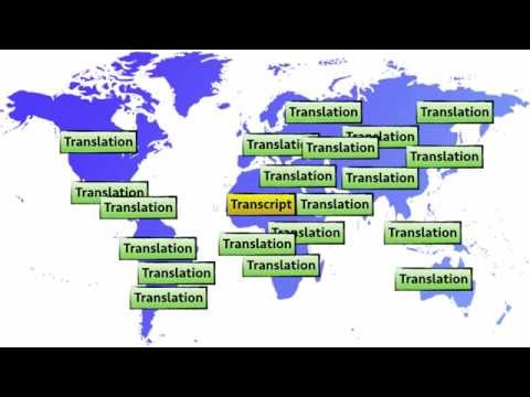 OTP Learning Series 06: How to transcribe