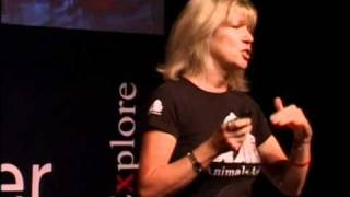 TEDxPearlRiver - Jill Robinson - Welfare of Animals