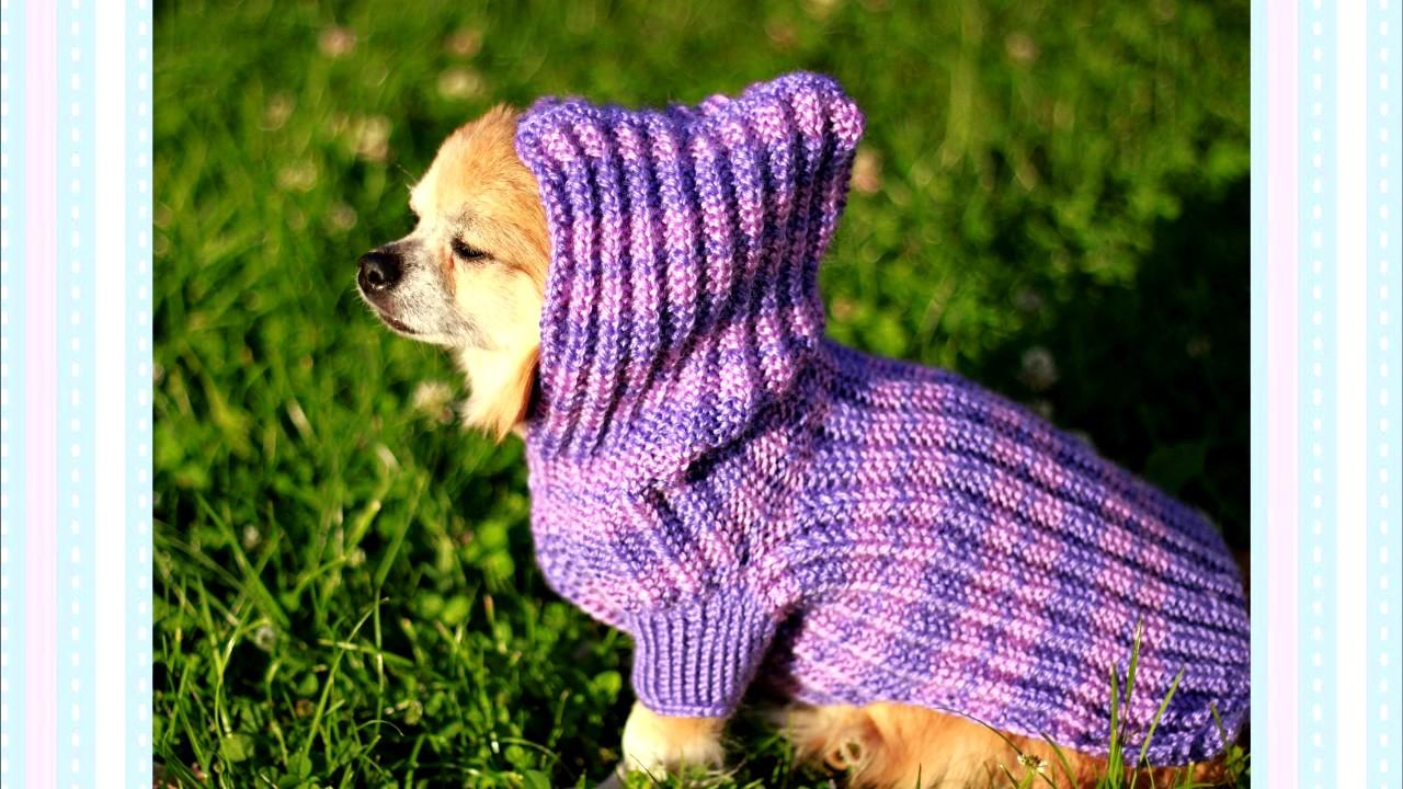 Ropa para perros tejidos a dos agujas - YouTube