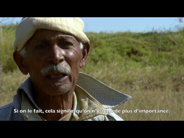 La terre des ancêtres   CUEJ info