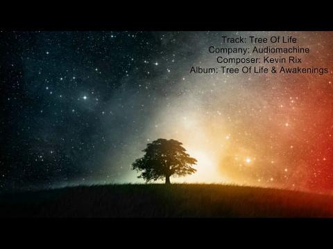 Audiomachine - Tree Of Life   Beautiful Uplifting Inspiring