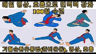 매일매일 명상. 호흡으로 면역력 강화 100일 수련-기…