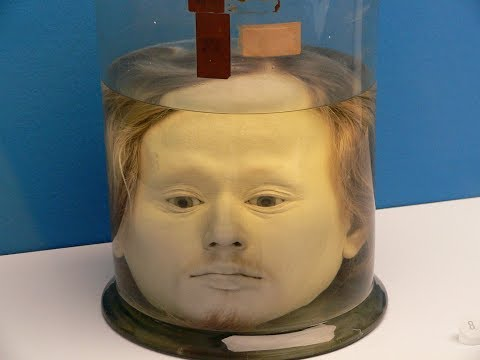 Preserved Human Head in a Jar of Portugal's First Serial Killer