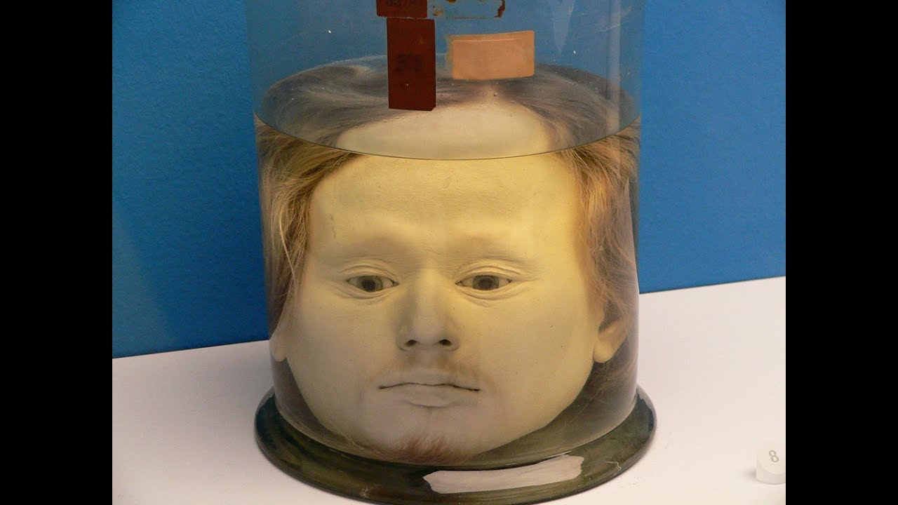 Preserved human head in a jar of portugal 39 s first serial for Heads in jar
