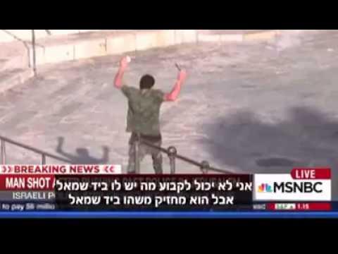 Palestinian journalists lies on live TV ערבי עיתונ