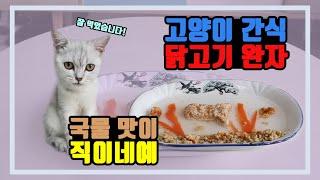 감기로 고생하는 아기 고양이 크림이에게 특식을 만들어주…