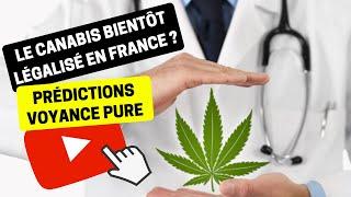 #182 Le cannabis bientôt légalisé en France ? - Bruno Voyant Voyance Drogue Santé Thérapeutique