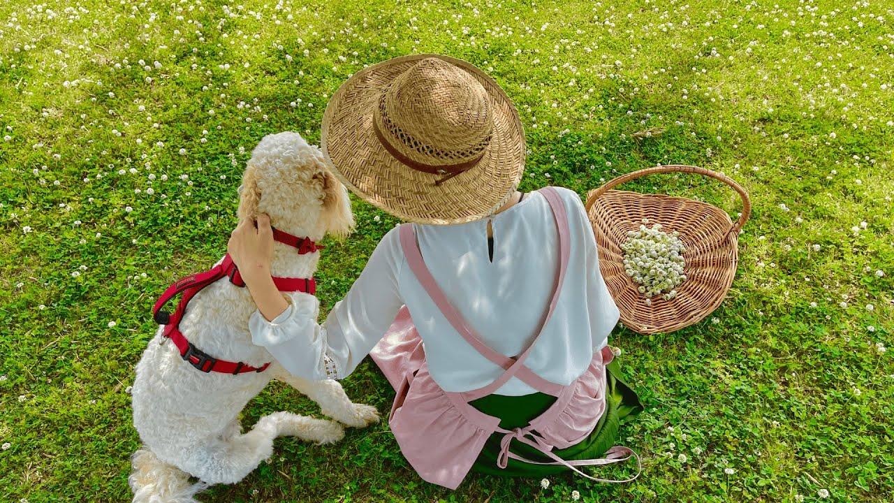 のんびり草むら日和🌿こねないナポリピザ🍕野鳥のひなを応援する🐥