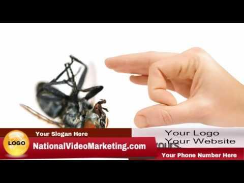 Pest Control PPC Video Marketing Internet Ads