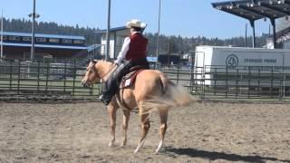 aqha ranch riding open pattern 3