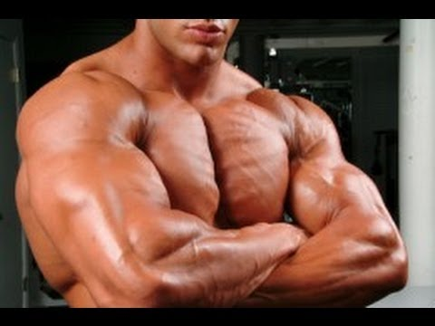 arm ripped arnold workout arnolds arms superset got
