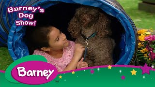 Barney|Sing Along|THINK!