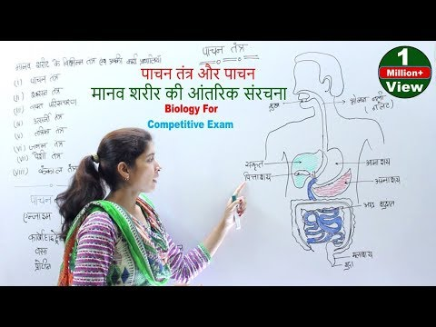 Biology For Competitive Exam - पाचन तंत्र और पाचन | मानव शरीर की आंतरिक संरचना | शरीर के तंत्र