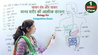 Biology For Competitive Exam - पाचन तंत्र और पाचन | मानव शरीर की आंतरिक संरचना | शरीर के तंत्र