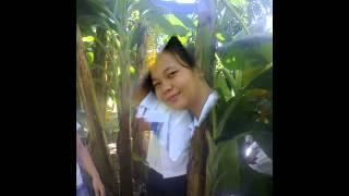 grade 6 cobra (Grade VI sampaguita ).wmv