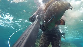 SarGoz-OrFoz spearfishing From Turkey(izmir) By Cihan ATAHAN