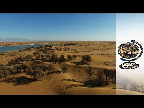Can A Desert Be Reclaimed For Human Habitation?