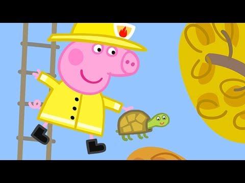 Peppa Pig Français | Compilation d'une heure 2 | Dessin Animé Pour Enfant
