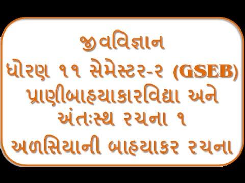 Alasiya Ni Bahya Rachana I 11th Biology Semester-2 By Jolly Joshipura Gseb