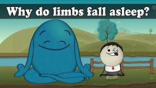 Why do limbs fall asleep?   Smart Learning for All