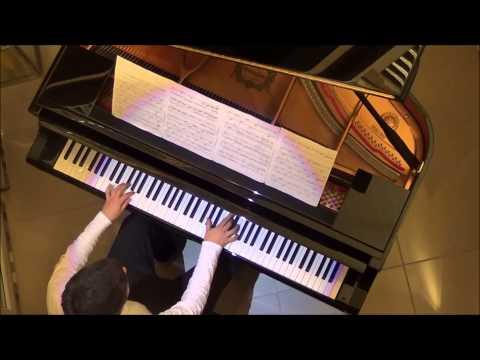 Deaf plays Beethoven