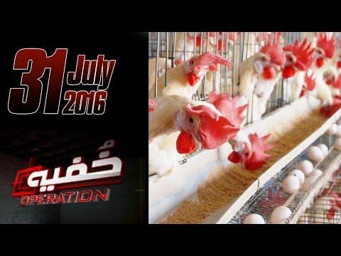 Murgi Kay Gosht Ki Kahani | Khufia Operation | Full Episode | 31 July 2016