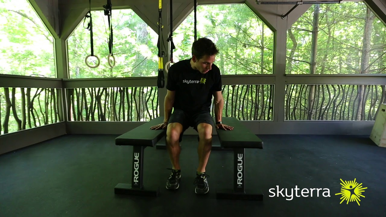 Movement Library: Tricep Dips