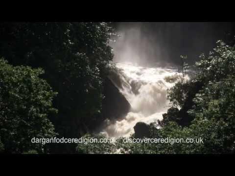Ceredigion - Countryside