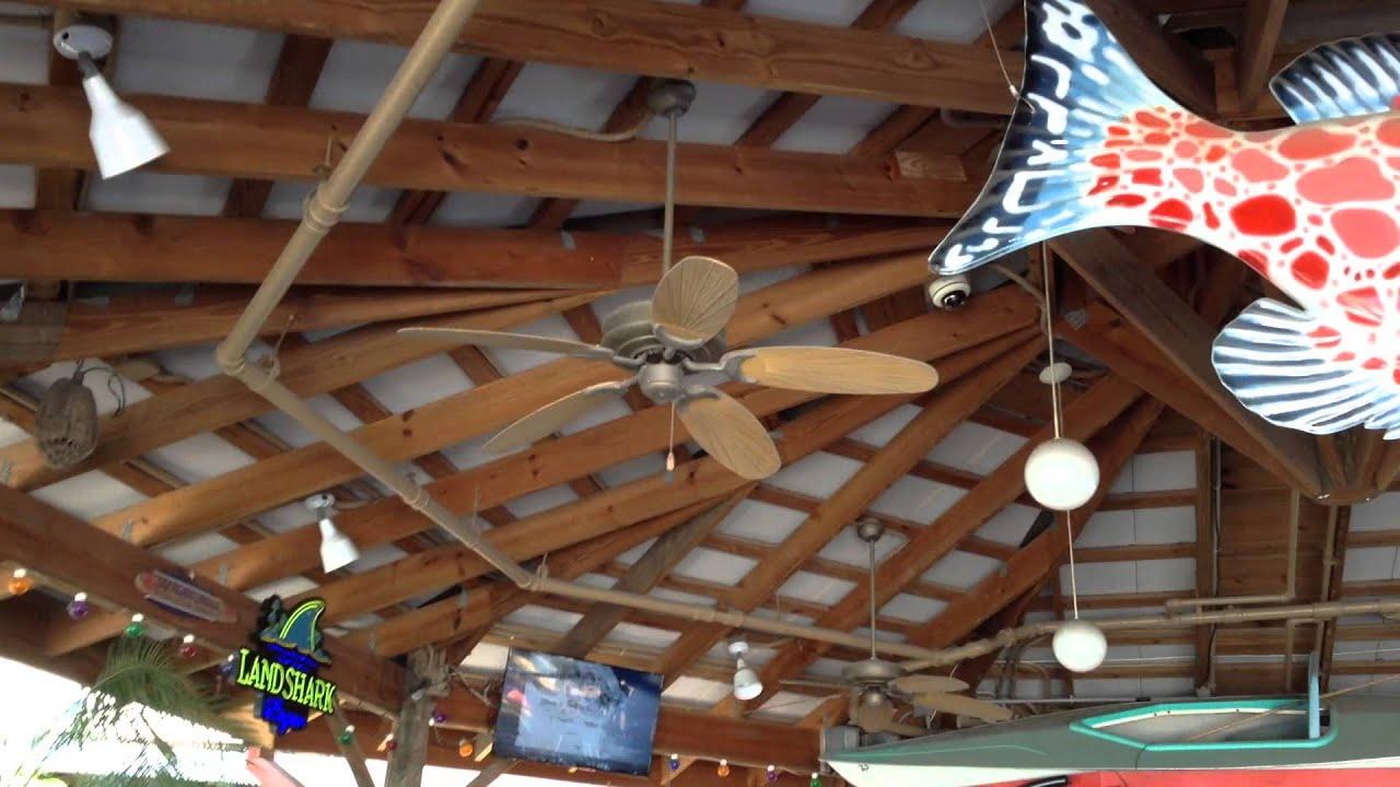 52 harbor breeze tilghman gulf coast raindance ceiling fans youtube aloadofball Gallery