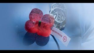 American Legion Family recognizes Poppy Day