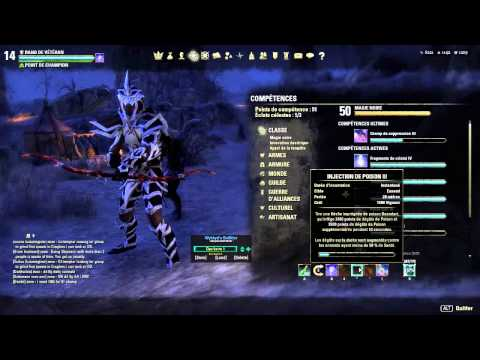 Build Teso Chevalier Dragon Tank