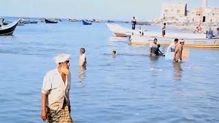صيادو بندر شقرة بأبين .. قصة معاناة لاتنتهي