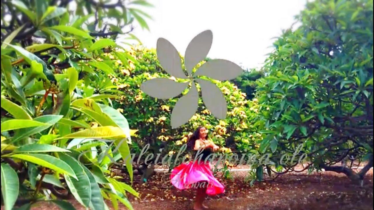 5月のフラ- Lovely `Ala Melia