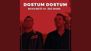 Dostum Dostum (feat. Güçlü Soydemir) Resimi