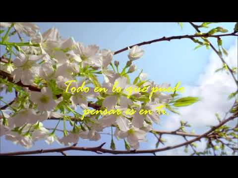 Coldplay - All I Can Think About Is You (Official Lyric Video) Sub Español