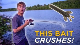 This Bait Catches EVERYTHING! | Unreal Multi-Species Fishing