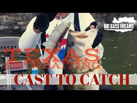 11 Inch Swimbait Gets Eaten in Texas Cast to Catch to Scale