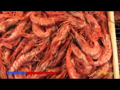 Ιχθυόσκαλα Ραφήνας | Ιχθυοπωλείο βύρωνας ιθώμης 11,φρέσκα ψάρια,καλύτερες τιμές,θαλασσινά