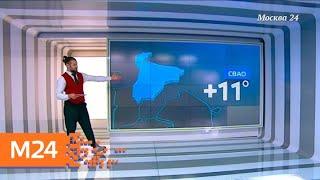 """Смотреть видео """"Климат-контроль"""": теплая погода ожидает москвичей ближайшие дни - Москва 24 онлайн"""