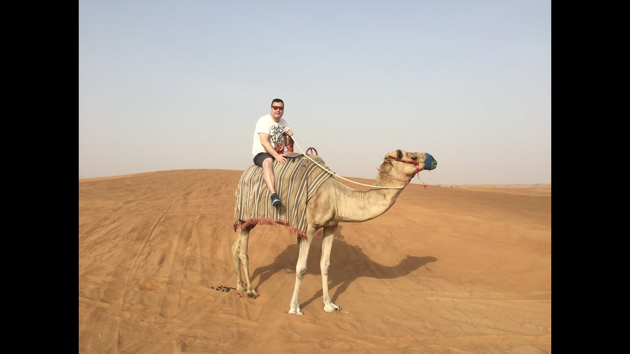 Camel riding in the dubai desert youtube camel riding in the dubai desert altavistaventures Choice Image